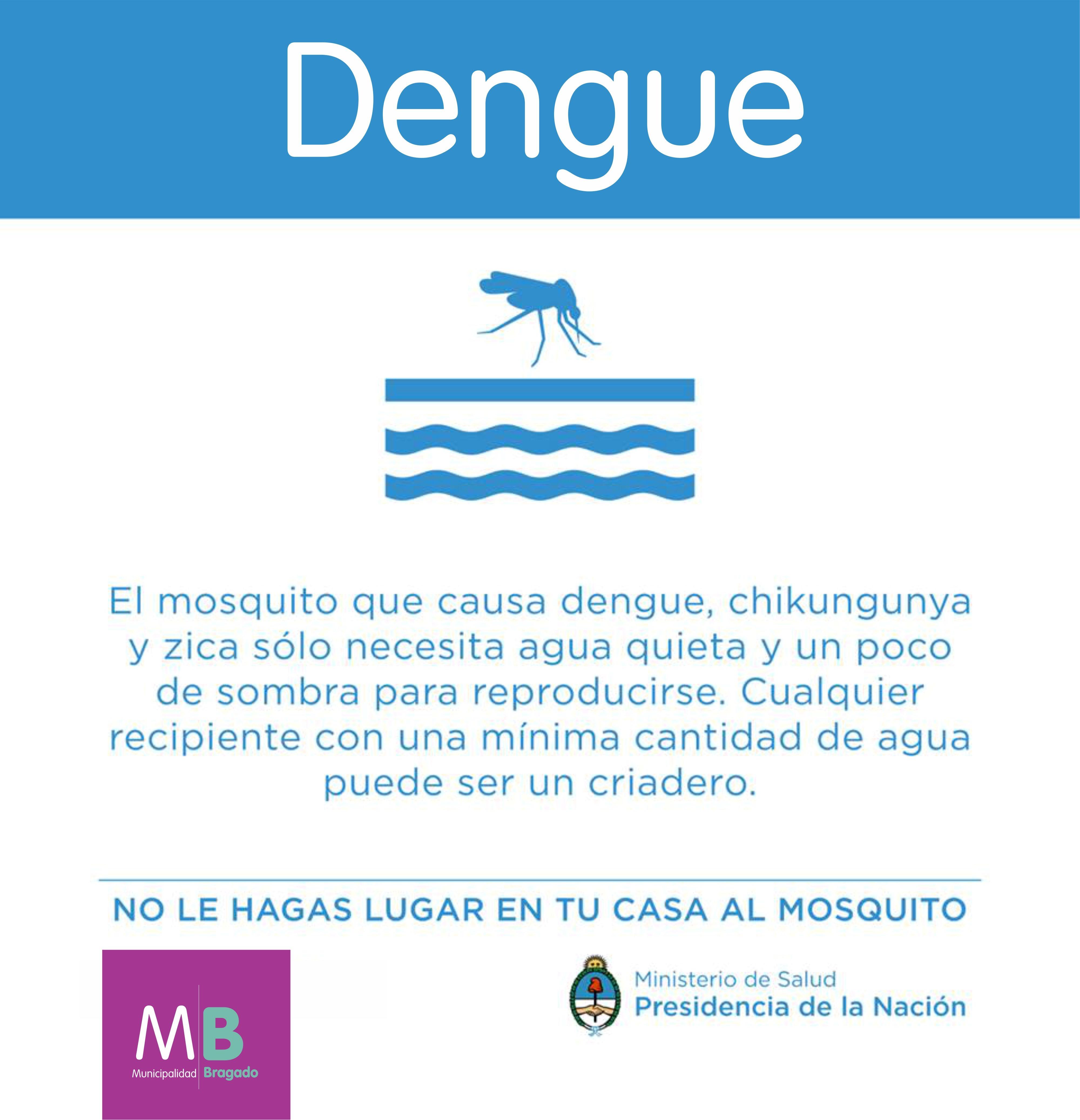 Dengue Info